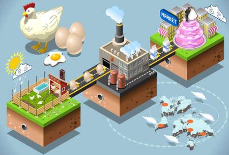 cadenas: Líquidos Productos de Huevo. Etapas Confitería industriy. Procesamiento de Huevos 3d Web isométrica Infografía Concept Vector. De fábrica hasta el consumidor. Producción y cadena de suministro de las industrias alimentarias.