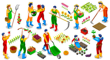 Isometric farmer people 3D icon set collection vector illustration. Farm field scene seed plant gardening tool