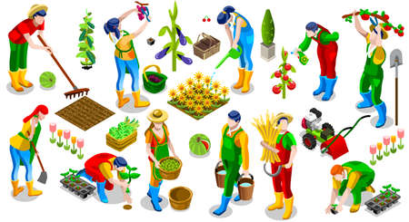 Isometric farmer people 3D icon set collection vector illustration. Farm field scene seed plant gardening tool Çizim