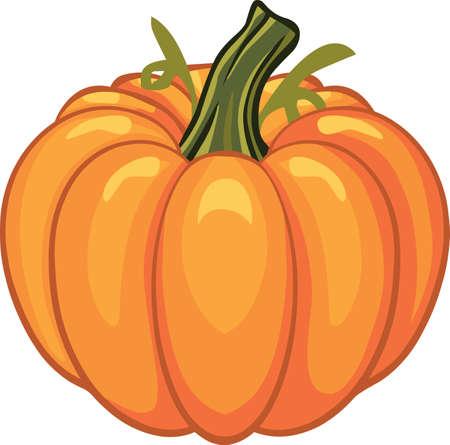 Pumpkin for autumn