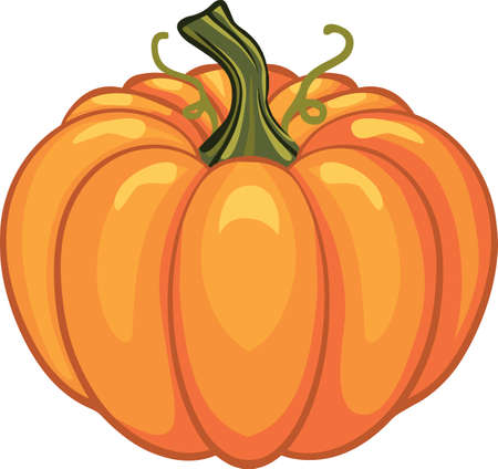 Thanksgiving Pumpkin autumn party holiday