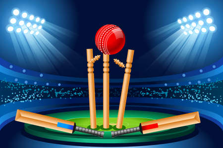 Cricket stadium background. Hitting recreation equipment. Vector design.