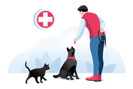 Dog and boy, animals at veterinarian clinic. Man with pet, people on cat care. Walking cat, pet at clinic for animals. Dog character, cartoon concept Isometric Illustration Vector Design.