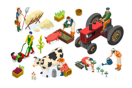 Farm worker production on planting or animals. Working organic farmer on tractor, agricultural people and fruits. Women on garden work harvest garden fruit. Agricultural worker farmer working on plant