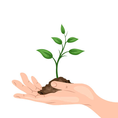 earth handful: A mans hand holding a sprout with a handful of ground. Environmental protection, ecology concept illustration in flat style. Earth Day or World Environment Day.