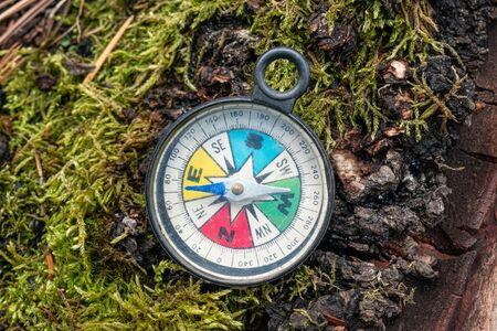 Colorful compass on the background of a trunk with moss. Concept of hikes on nature Stok Fotoğraf