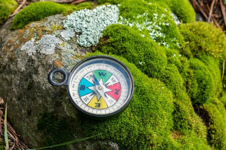 Colorful compass on a stone with moss and lichen at the forest