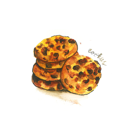 a illustration of chocolate chip cookies