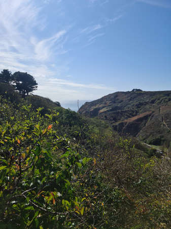 Petit Bot Cliff Paths, Guernsey Channel Islands