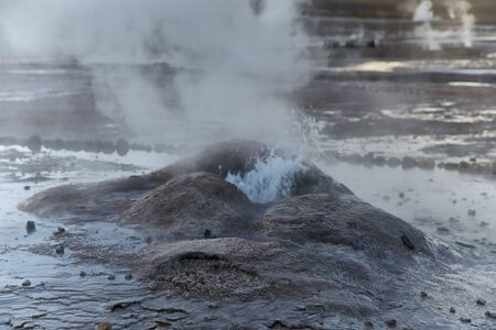 Tatio Geysers early morning at San Pedro de Atacama, Antofagasta