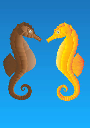 seahorse lovers on blue background