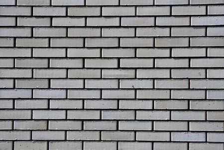 dappled: White brick wall