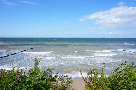 oceanside: Coast at the sea with green plants Stock Photo