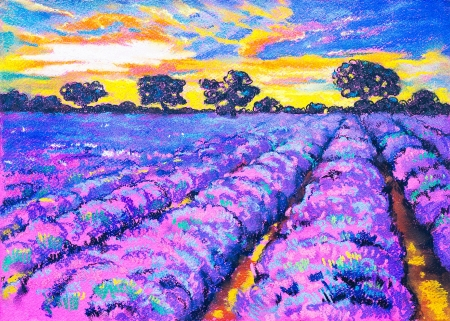 Original painting with pastel on cardboard. Beautiful lavender field at sunset. photo