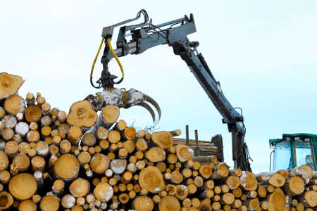 gripper: Stacking the logs with woodworking handler in winter  Stock Photo