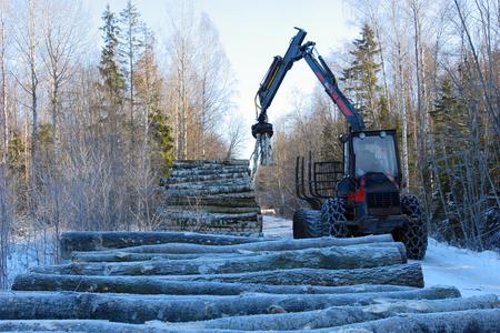 Stapelen boomstammen in de winter, de voorbereiding voor transport Stockfoto