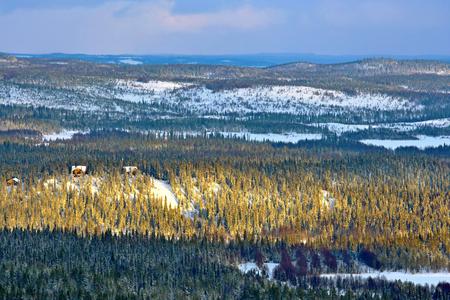 Winter landschap met bergen en 's avonds zon in Noord-Finland.