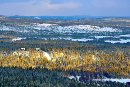 Winter scenery with mountain and evening sun in Northern Finland.