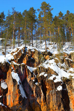wildlife preserve: view with red rocks and straight pines in Oulanka wildlife preserve, Finland