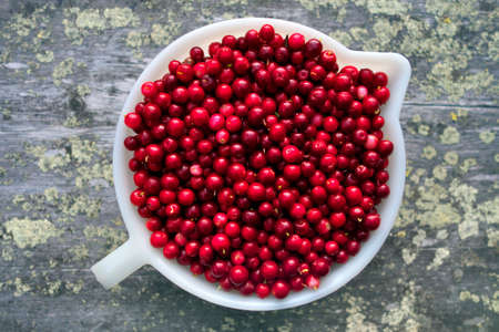 mountain cranberry: Freshly picked foxberries on ancient wooden table (outdoors) in Lapland, Finland.