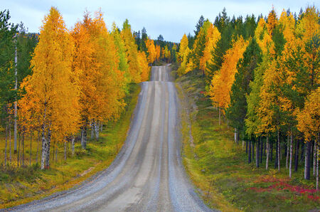 Camino montañoso en el norte de Finlandia en otoño.