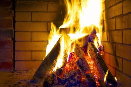 smut: Fireplace with burning logs.