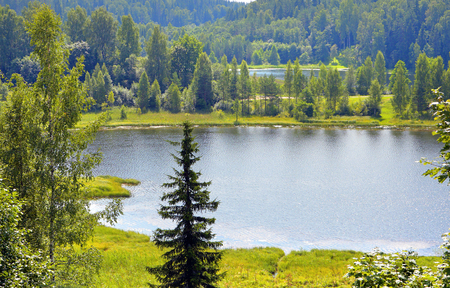 Summer landscape with forest and lakes in Southern Estonia.