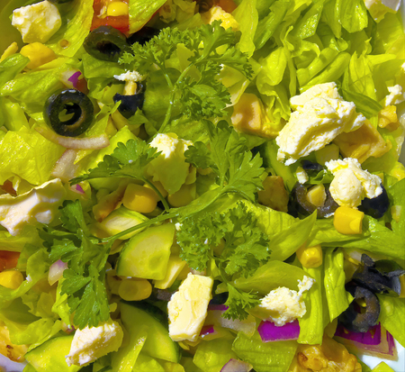 Salad with feta cheese and greens. Imagens
