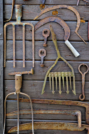 Ancient rusty agricultural hand tools and fish gig on old wooden wall as decoration.