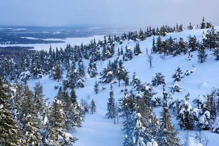 Winter landscape in Ruka skiing area, Finland. Imagens