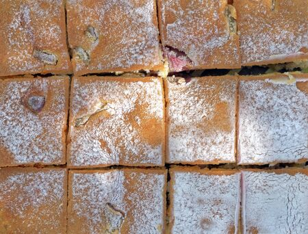 Rhubarb cake, sprinkled with icing sugar, view from above.