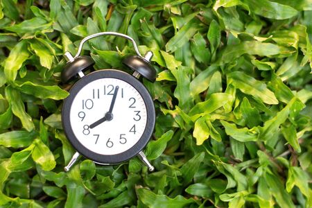 Black alarm clock on green grass  background , time concept. 스톡 콘텐츠