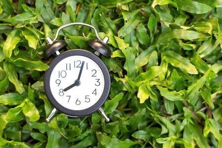 Despertador negro sobre fondo de hierba verde, concepto de tiempo.