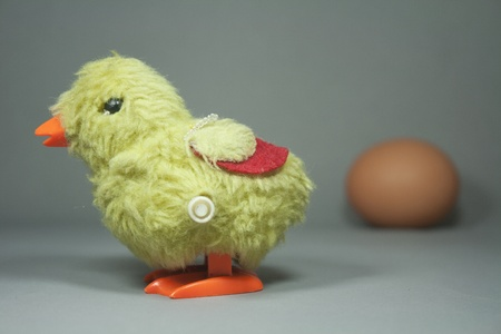 easter chick and egg isolated photo