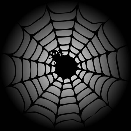 Web and Spider Vector