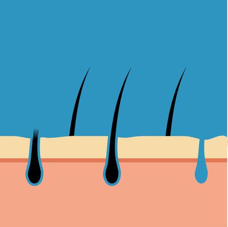 Pore Vector