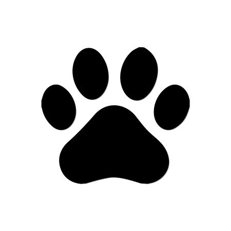 pictures of dog paws