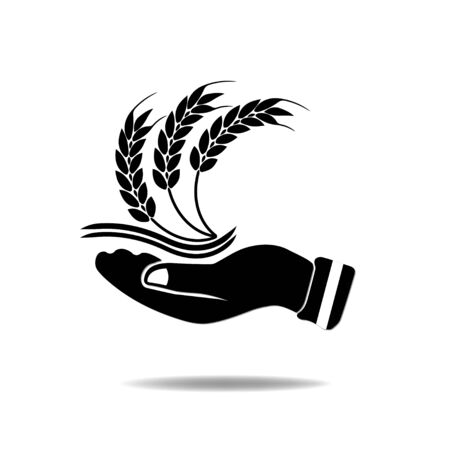 Hand with Wheat. Vector
