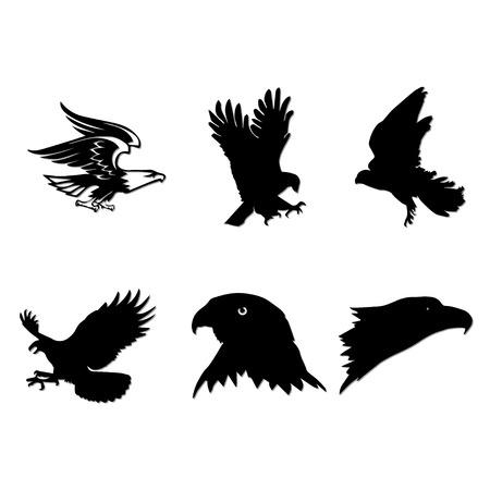 adler silhouette: Habicht Set