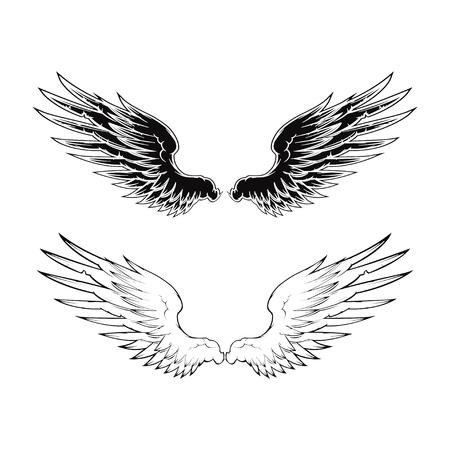tatouage ange: Aile