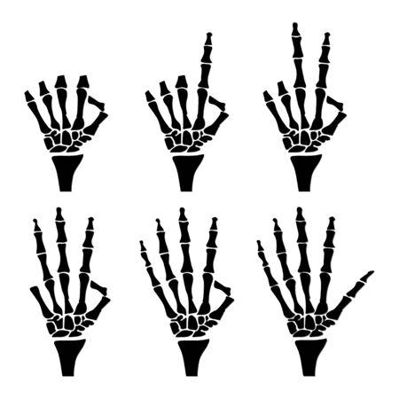 anatomical: Hand anatomical shows