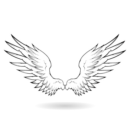 tatouage ange: Wing  Illustration
