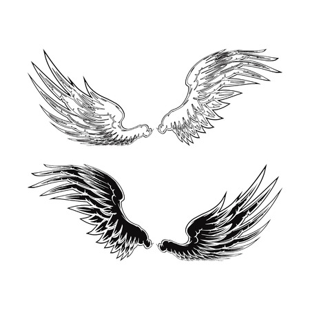 Wing Stockfoto - 38798601