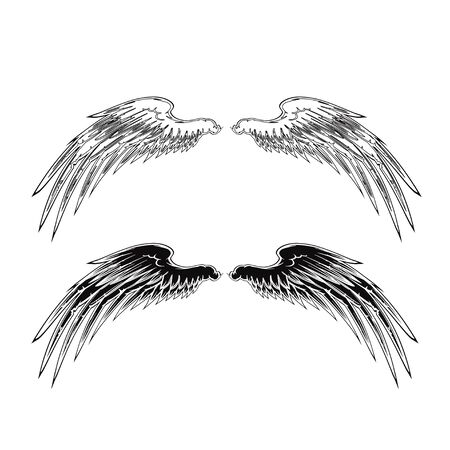 Wing Stockfoto - 38798600