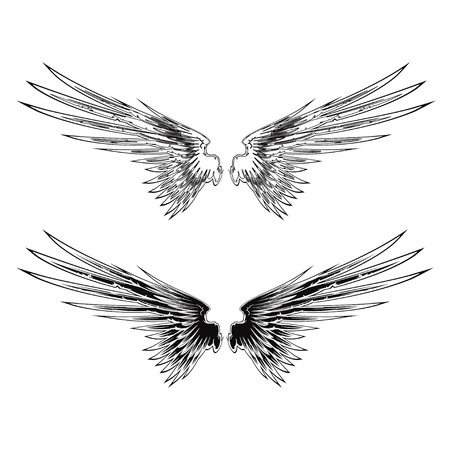 abstract wing: Wing