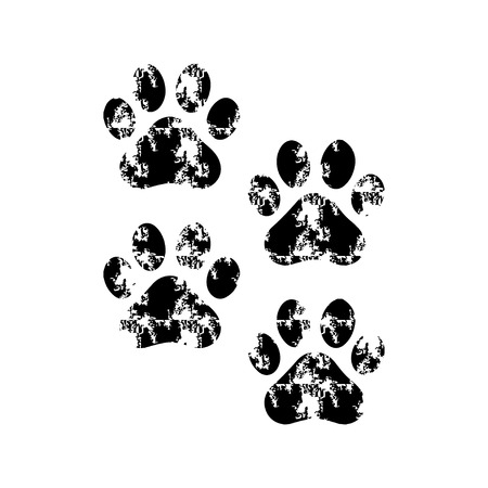 Paw Prints with Stain