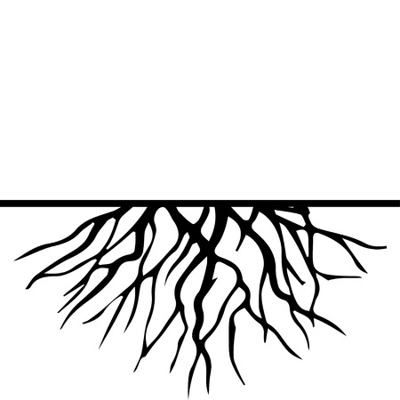 tree and roots: Root Illustration