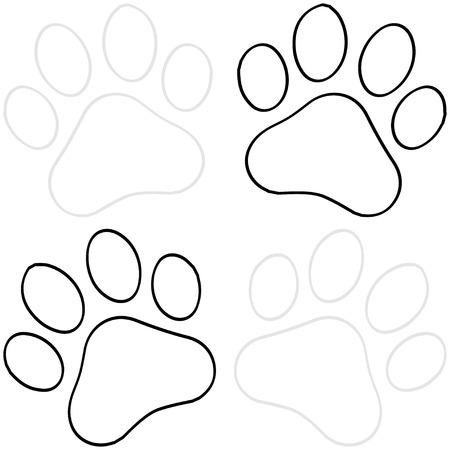 Paw Print Illustration