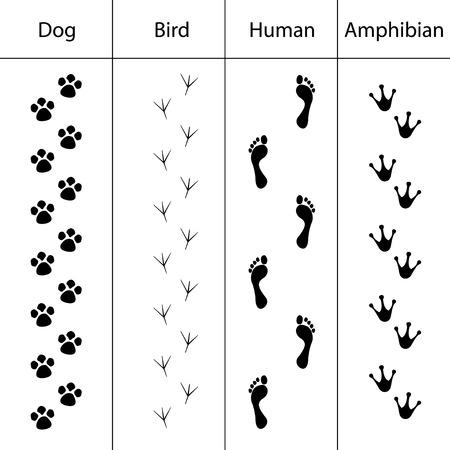 4 동물 발자국 아이콘 세트 일러스트