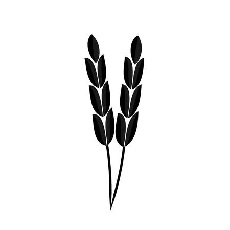 sheaf: Ears of wheat